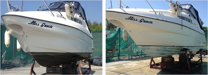 Antifoul removal panel